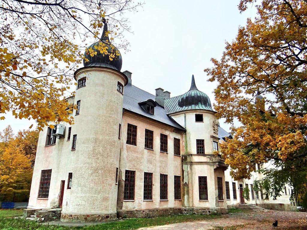 Фотопідбірка забутих палаців України