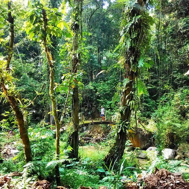 природа В'єтнам
