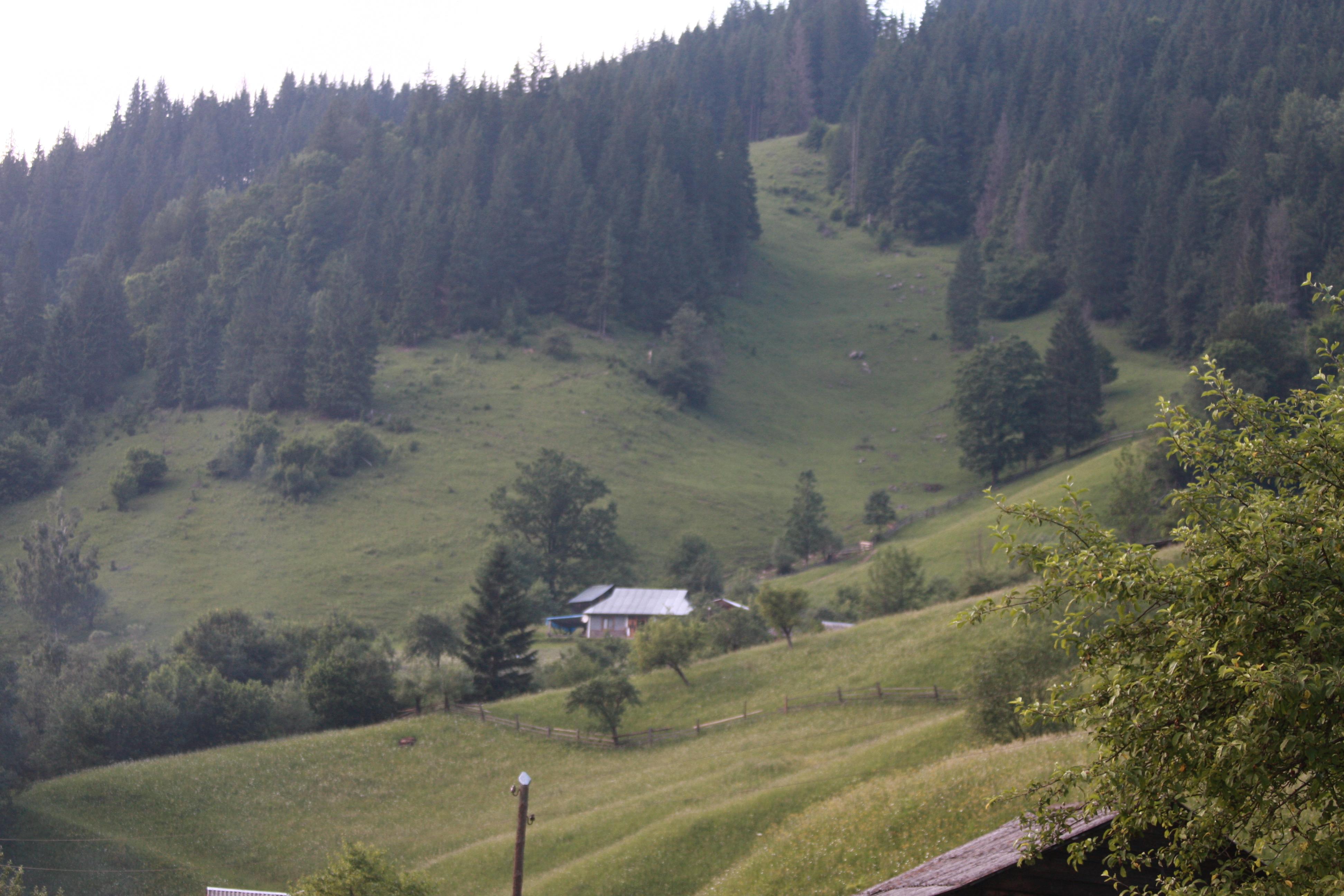 Carpathians trip & BD_0123