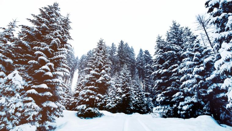 Зима в Украине куда поехать