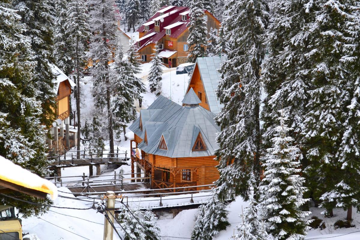 Wooden house in Carpathian Mountains. Dragobrat. Ukraine