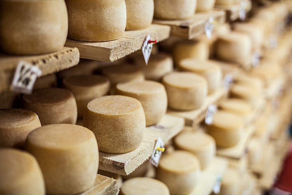Сыроварни Украины: где купить настоящий украинский сыр