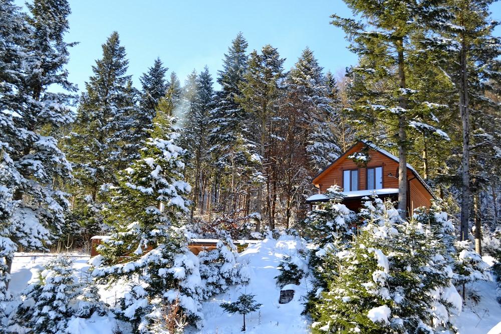 Отдых в Карпатах зимой_Осоння