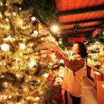 10 різдвяних фестивалів в Україні