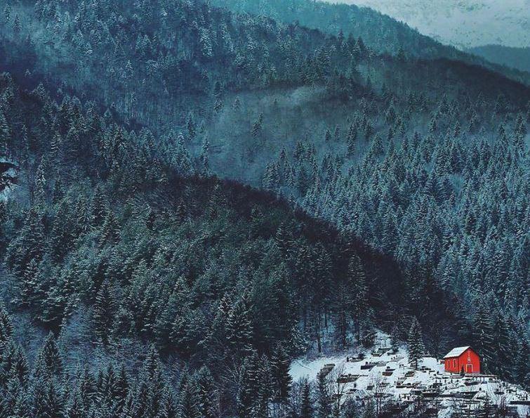 30 одиноких будинків серед чарівної краси зимових пейзажів (фото)