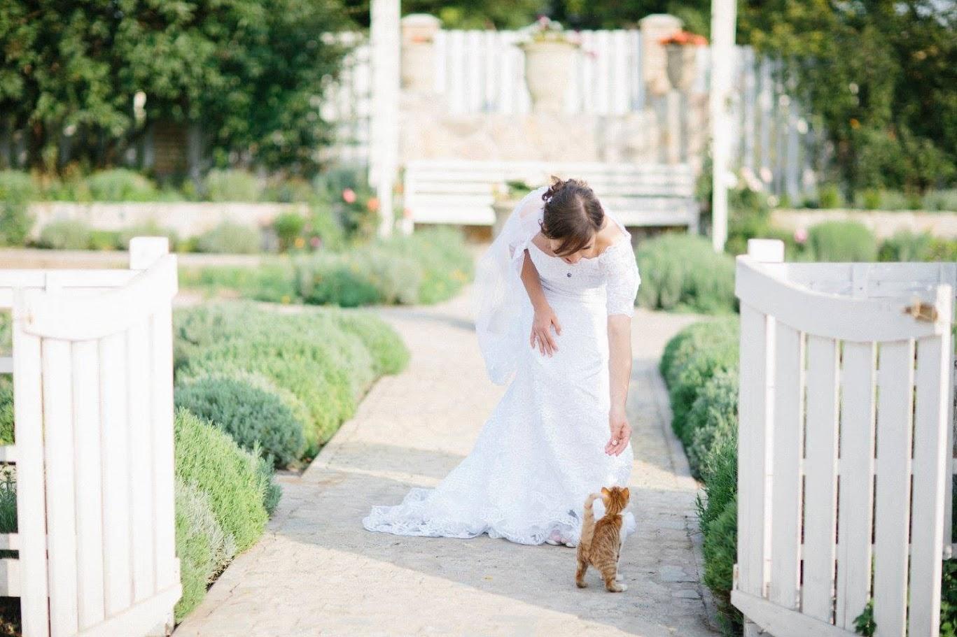 Свадьба в эко-усадьбе Maison Blanche