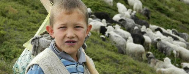 Як живуть маленькі гуцули: унікальний репортаж про дітей Карпат