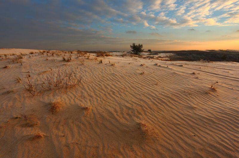 Пустыня Харьковская область,