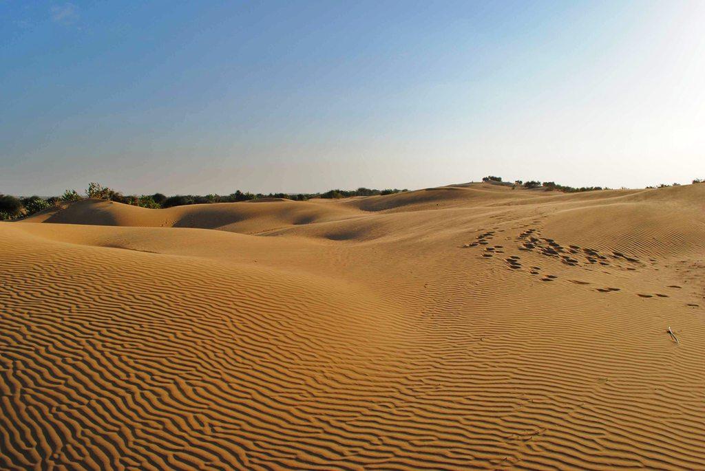 Пустыня в Украине: история, тайны и загадки Олешковских песков
