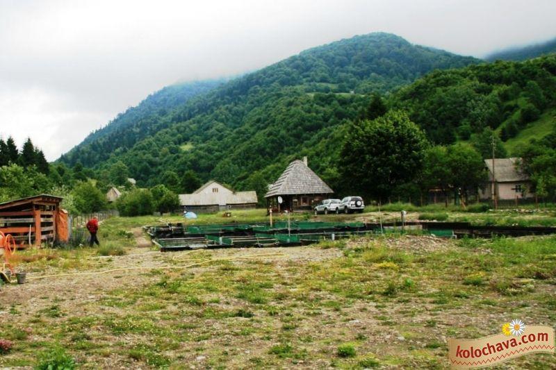 Форелевые пруды, Колочава