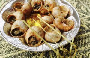 Перша равликова ферма в Закарпатській області вже працює