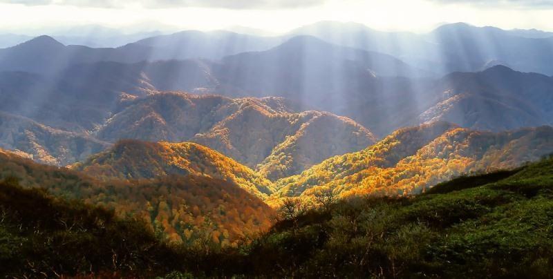 Найвідвідуваніші місця Закарпаття: де частіше всього можна зустріти туристів