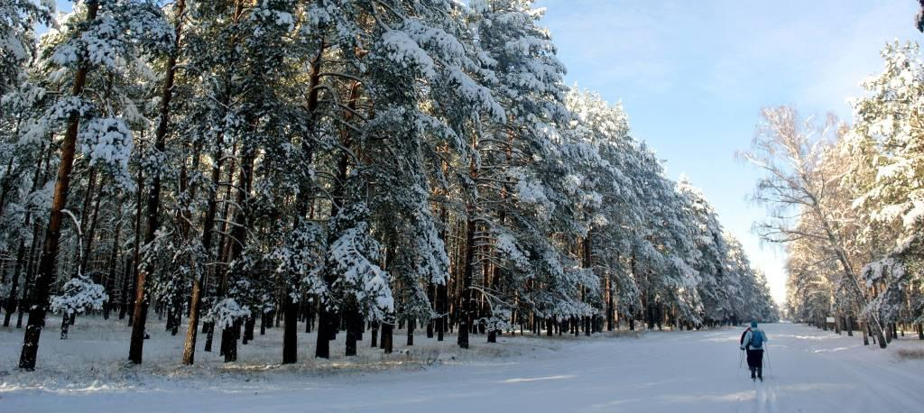 Національний парк Залісся