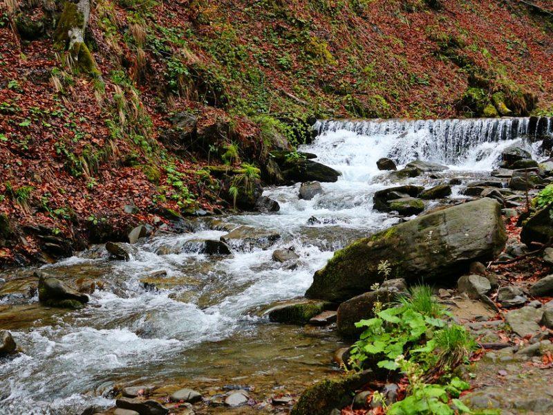 Відео водоспаду Шипіт, яке створює відчуття присутності біля нього (відео)