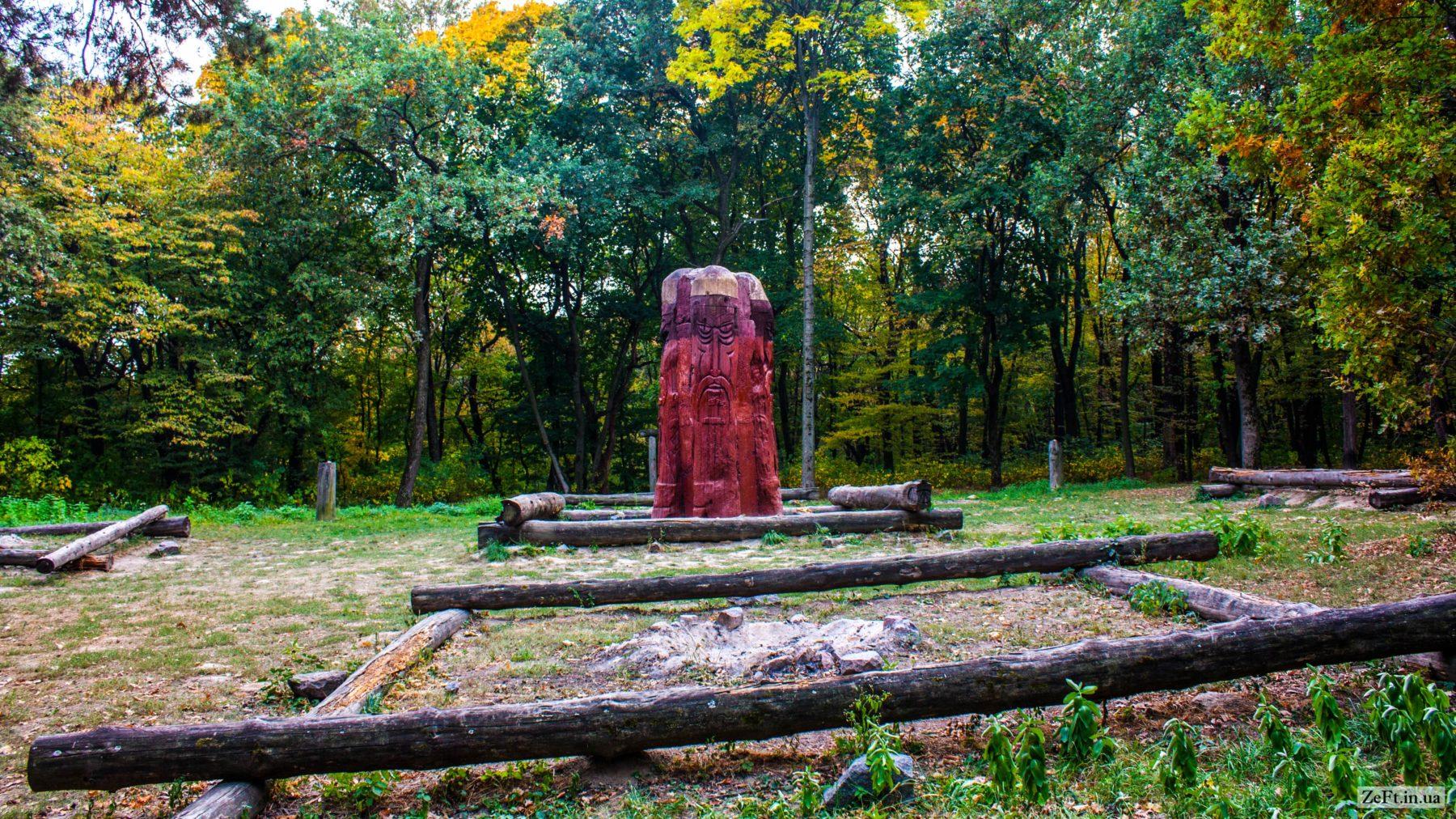 Лиса гора Фото zeft.in.ua