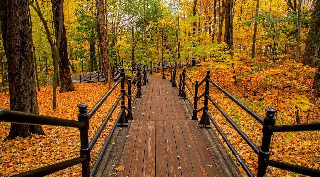 10 парків України для прогулянок восени