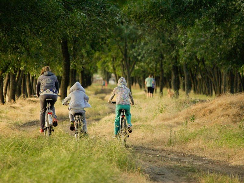 Куда поехать с детьми в Карпатах: выбор отеля