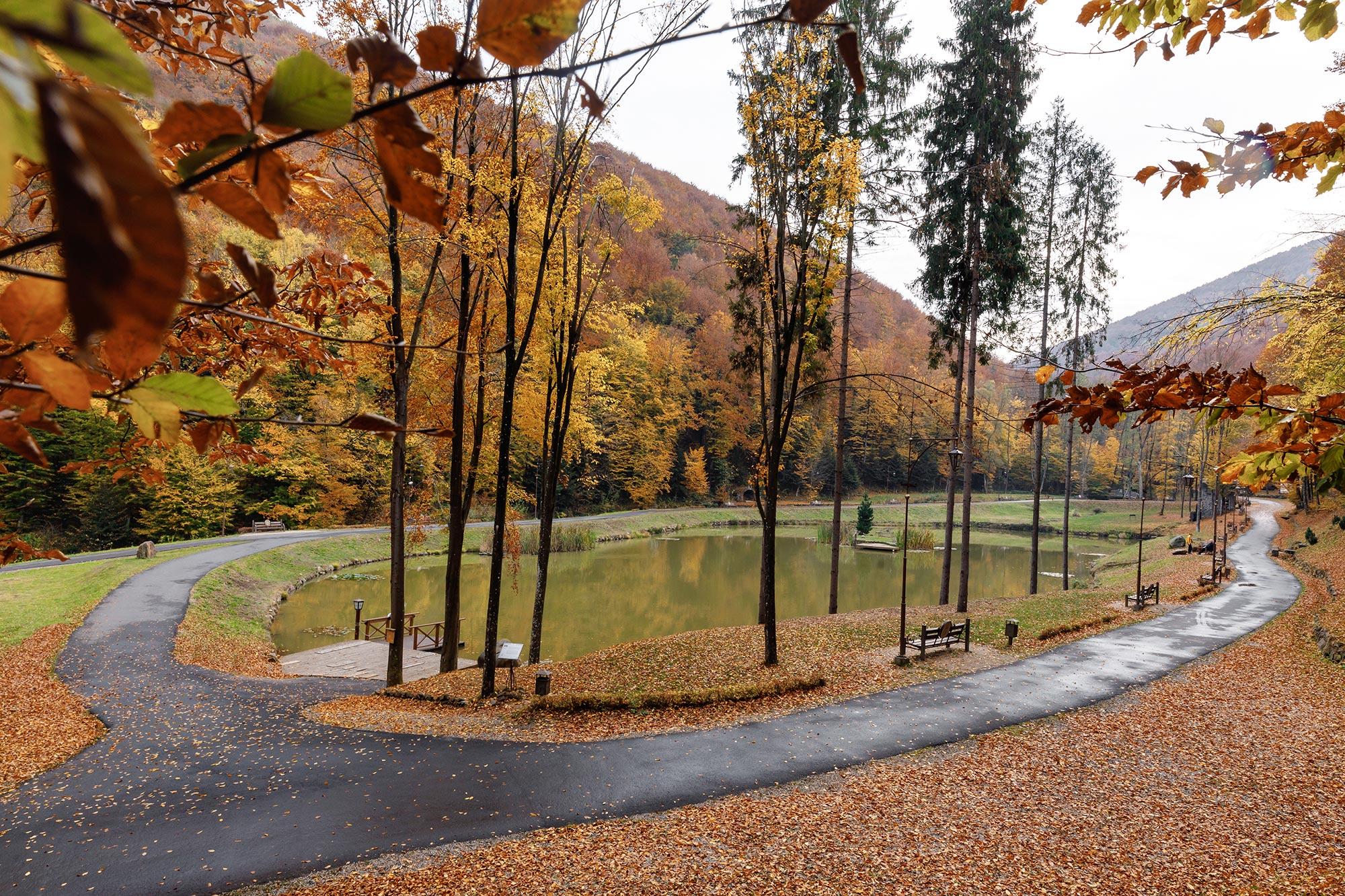 Парк Шенборна, Озеро Тур