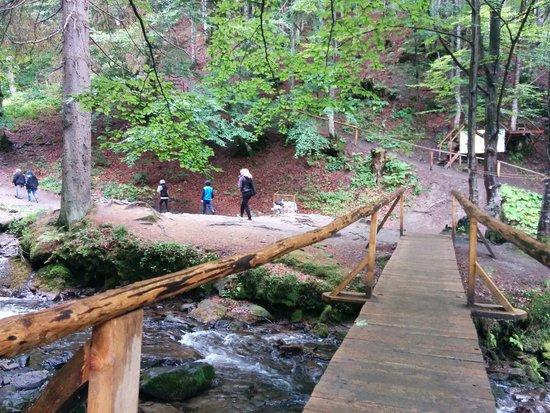 Дорога к водопаду Шипот