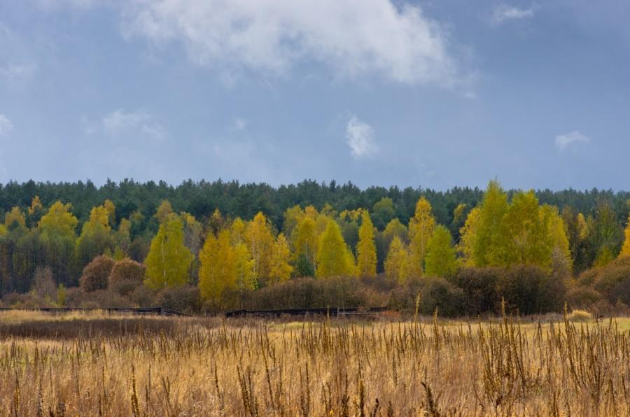 Межреченский региональный ландшафтный парк